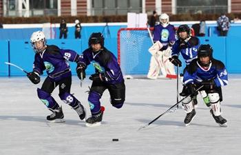 Zhangjiakou promotes ice-snow sports