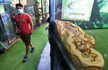 Tourists visit Monsters aquarium in Thailand