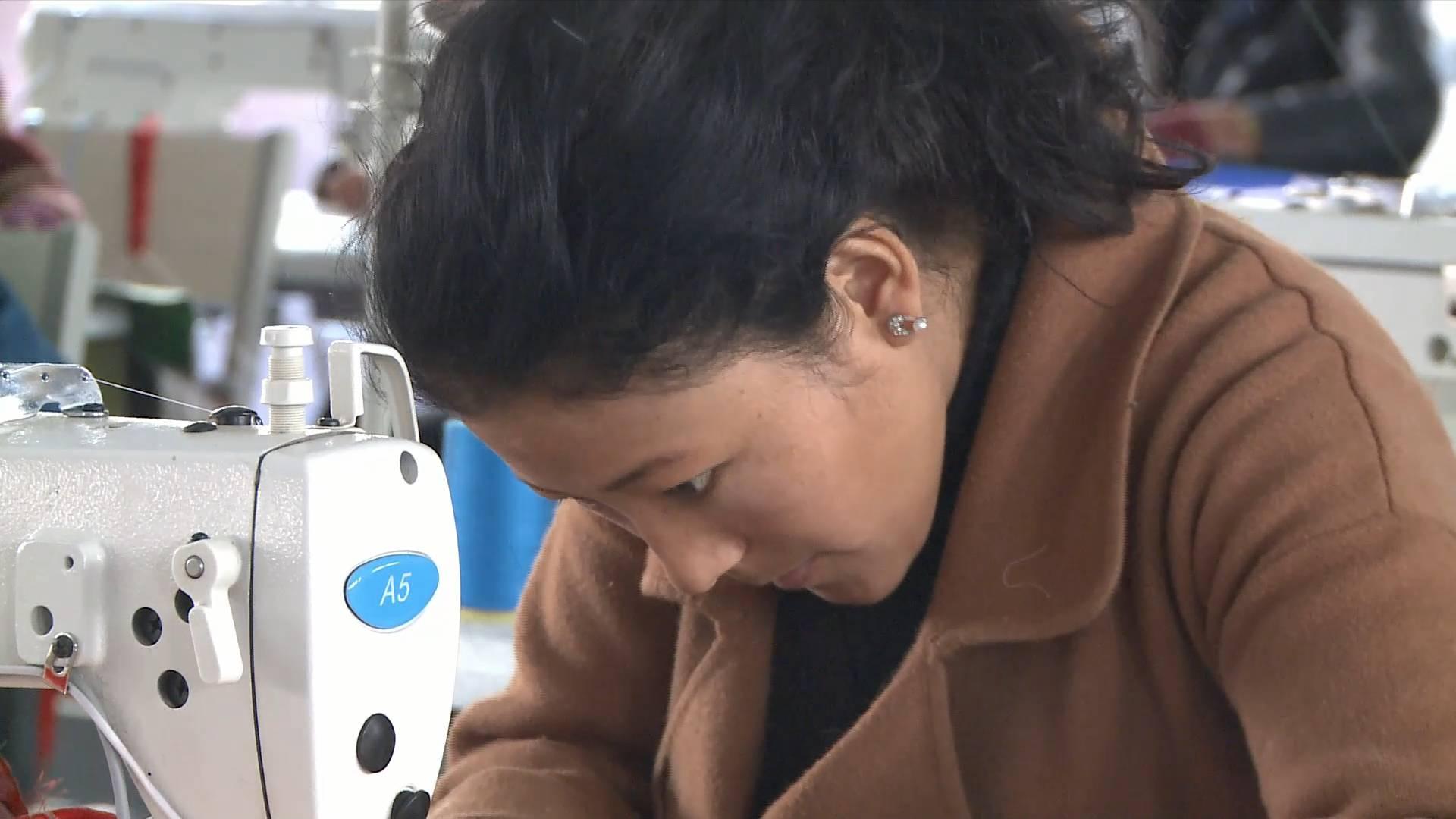 Tibet helps more than 600,000 farmers, herdsmen find jobs