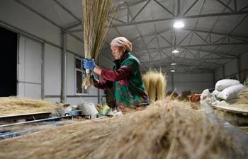 Pic story of Li Yaomei, who dedicated to Xihaigu poverty alleviation