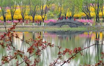 Flowers in full bloom at Huangtaishan Park in Hebei