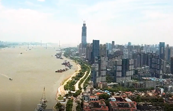 GLOBALink | Wuhan bustles with life one year after lockdown lifted