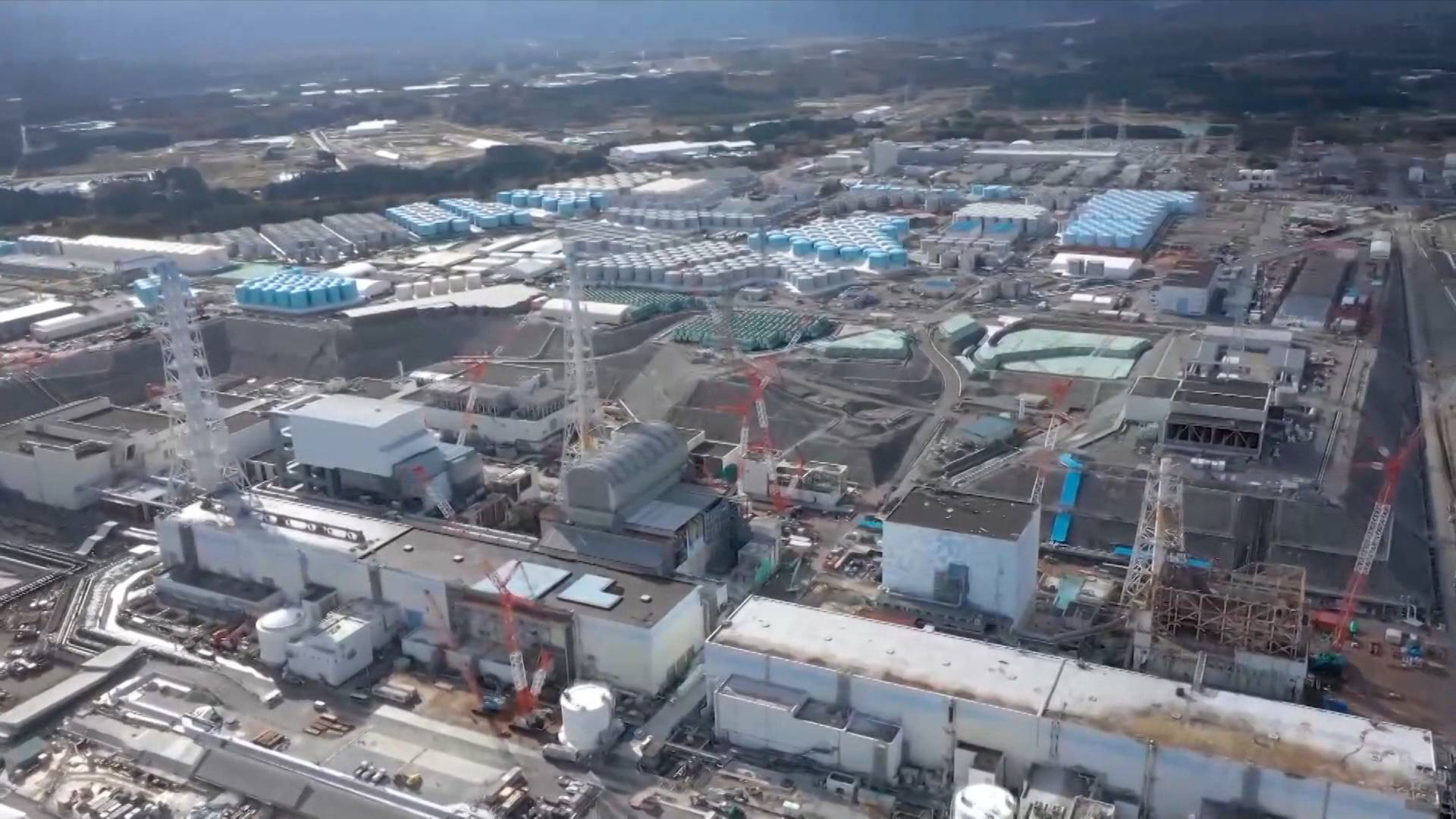 GLOBALink | More scientific research needed for dumping nuclear wastewater: ecologist