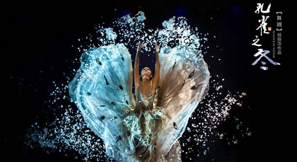 舞蹈家楊麗萍將于北京舉行《孔雀之冬》專場演出