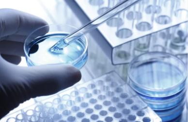 輝瑞公布抗擊COVID-19五項承諾 呼吁生物制藥行業合作共抗疫情