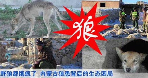 野生动物保护法修改