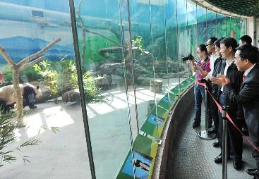 """""""熊猫之父""""台北动物园""""探亲"""""""