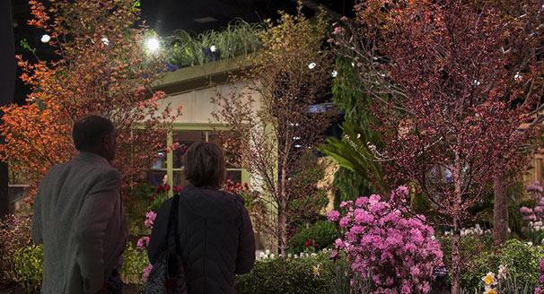 波士顿园艺花卉展