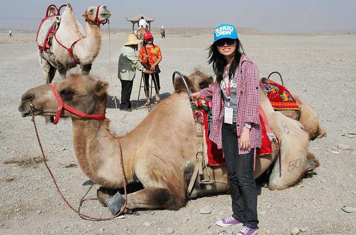 骆驼扒胎机马达接线图