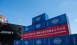 埃及首批中國國際進口博覽會參展品起運