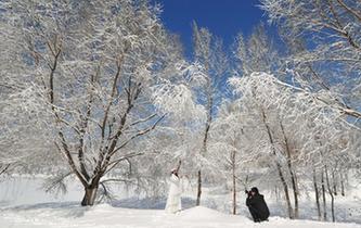 沈陽雪後天晴景色美麗吸引民眾觀賞拍照