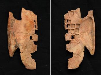 秦鹹陽城遺址發現罕見戰國晚期卜甲
