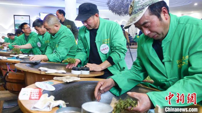 36位炒茶高手西湖过招非遗文化代代传