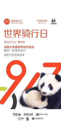 綠色騎行大使:成都大熊貓繁育研究基地