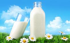 全程可追溯鲜牛奶在上海顺利进口