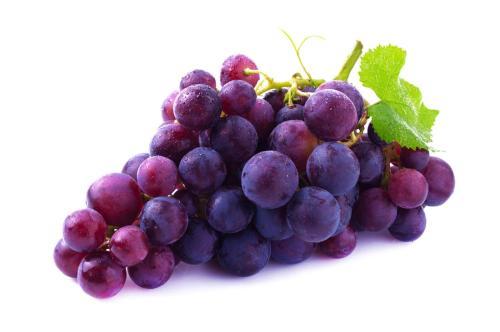 海南热带葡萄实现商品化种植    ,打破了传统说法