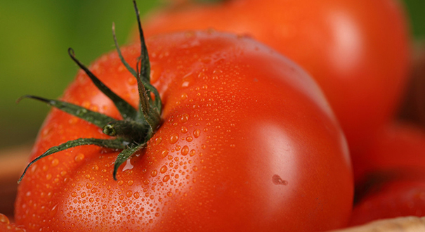 空心西紅柿是打了激素不能吃? 辟謠聯盟為你壓壓驚!