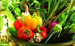 专家释疑:为什么各个国家的农药残留限量标准有所不同?