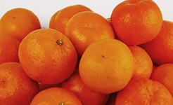 国家市场监管总局通报9批次食品不合格情况
