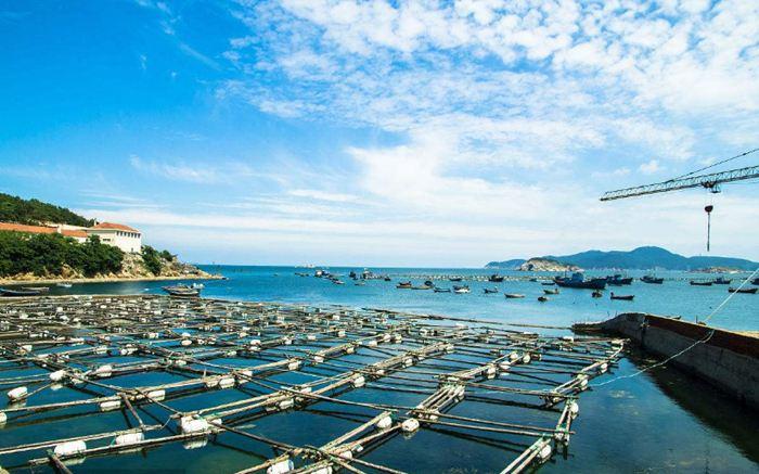 加快推进水产养殖业绿色发展