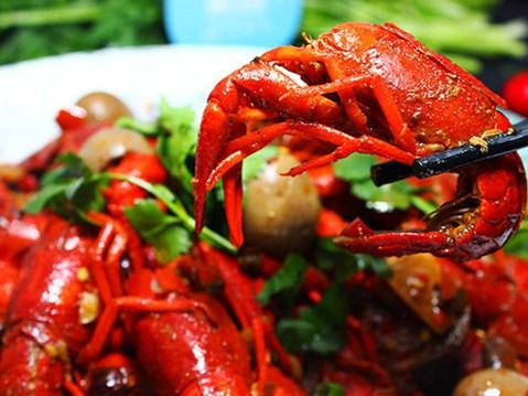 京滬小龍蝦今年降價超35% 河北訂單量增速第一