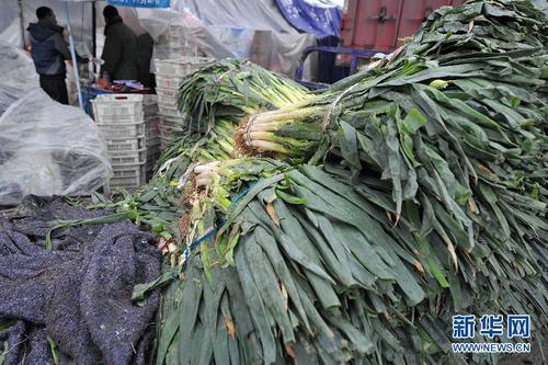 吃了這麼多年的蔥,你知道它的這些治病功效嗎