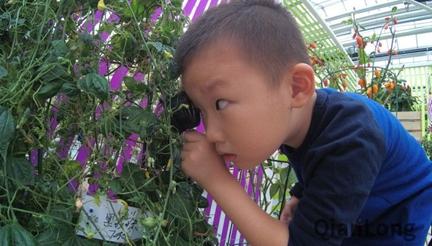 百蔬園裏科技多 小小觀察員來揭秘