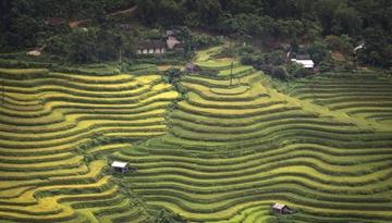 三夏農機安全作業係列短片——現場環境勘察篇