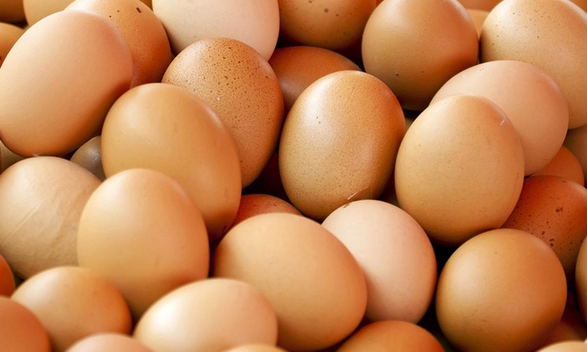 7月份雞蛋價格止跌回升