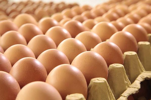 近期蛋價上漲 專家稱三方面原因疊加所致