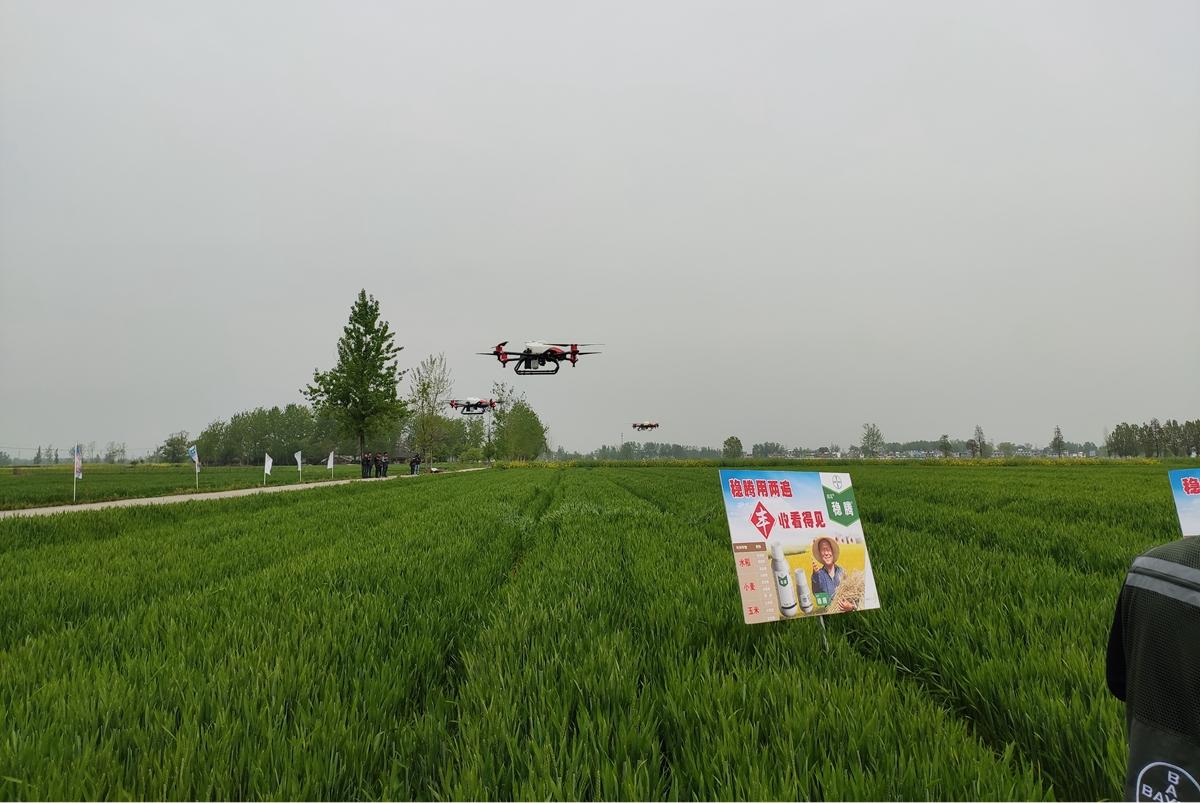 拜耳亮相第三屆進博會 宣布捐助20萬中國小農戶