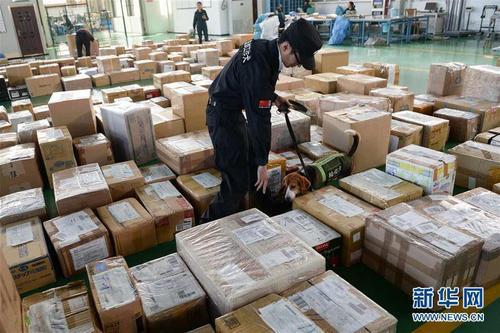 我国跨境电商农产品贸易现状如何?