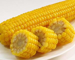 芝加哥农产品期价9日上涨