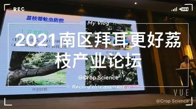 2021南區拜耳更好荔枝産業論壇在廣東廉江舉行