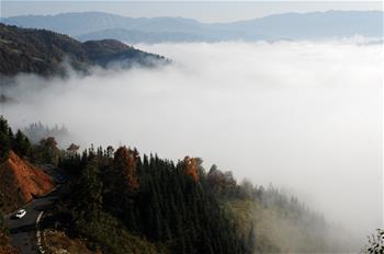 貴州從江現雲海美景