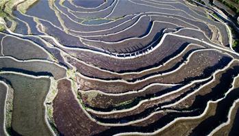 湖北蕲春:梯田景观成就扶贫产业