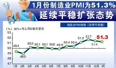 图表:1月制造业PMI为51.3% 延续平稳扩张态势