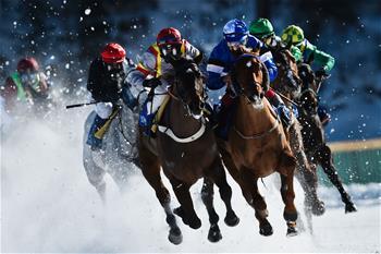 賽馬——雪地賽馬大會
