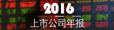 2016上市公司年報