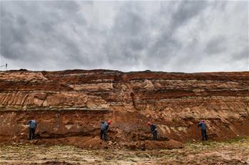 吉林延吉龍山恐龍化石群進行係統發掘