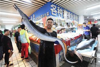 巨型鲅魚鰻魚亮相青島水産市場