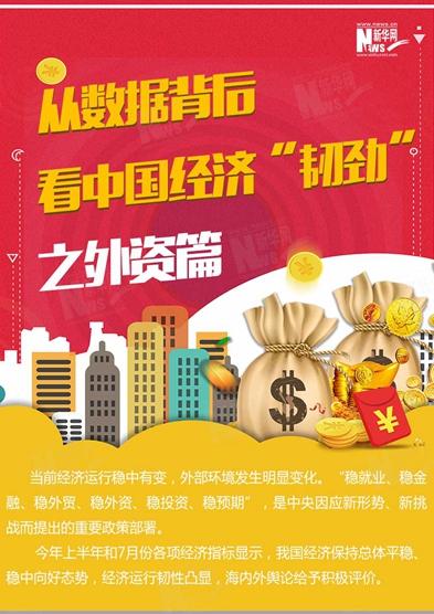 """中国经济""""韧劲""""之外资篇"""