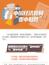 """""""中國經濟新觀察""""係列"""