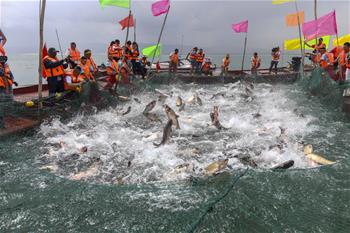中國最大內陸淡水湖迎來開湖季
