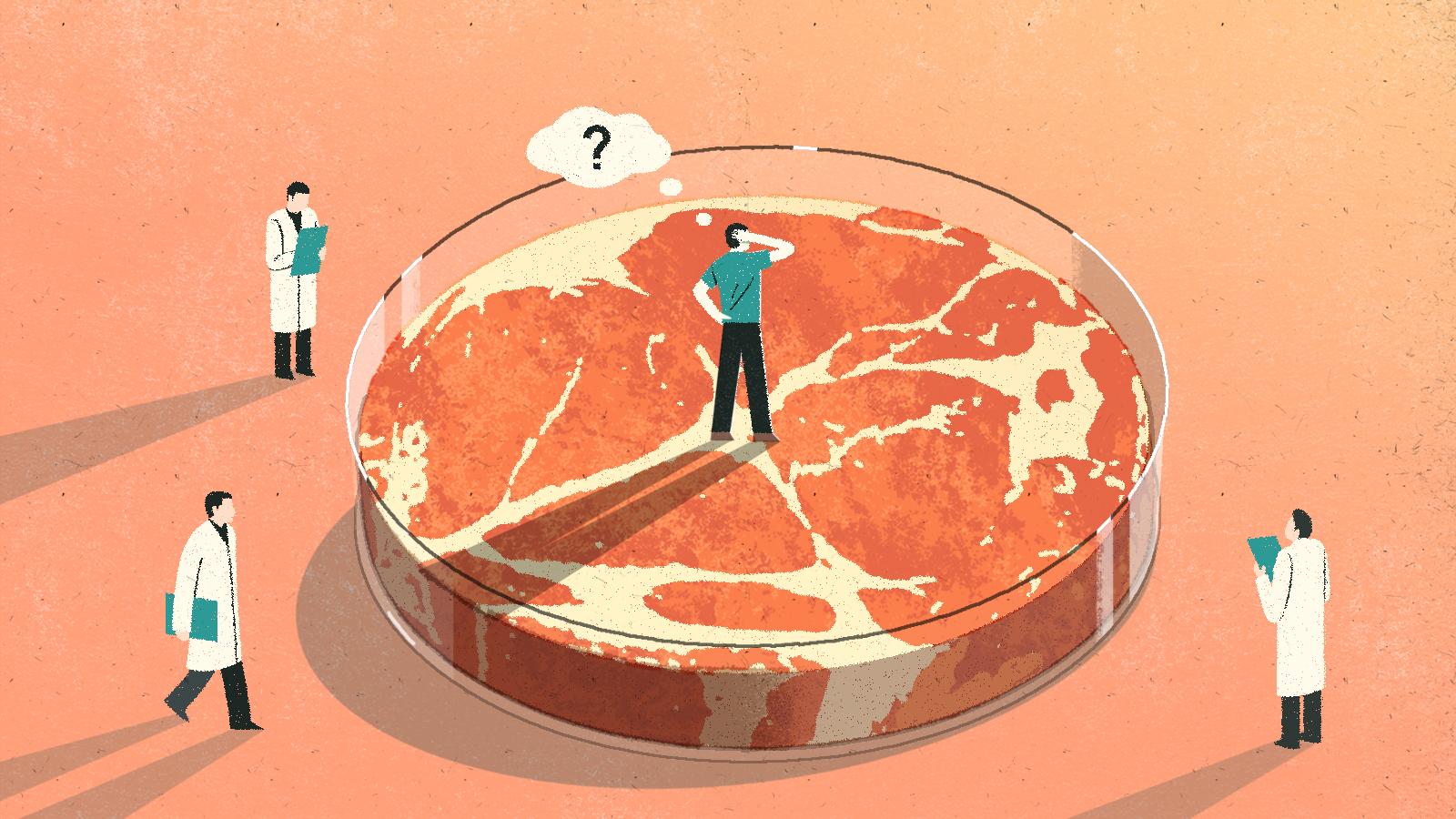 人造肉火熱背後:價格高企 標準缺失 相關概念股接連漲