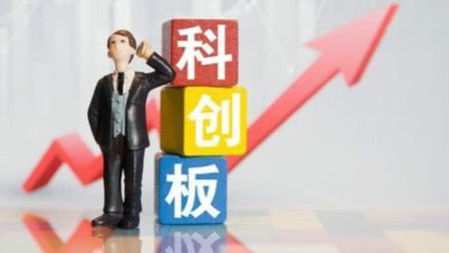 两科创板公司迎访客 机构扎堆调研医药股