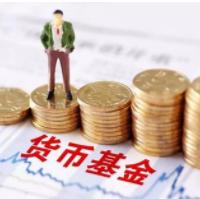 【基金投教周】货币基金规模猛增 它是市场巨浪中的避风港吗