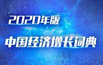 2020年版中國經濟增長詞典