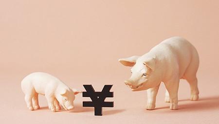 豬價轉入下跌周期意味著什麼