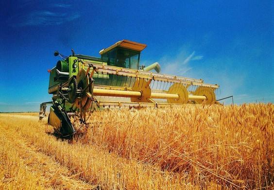 新农险正式扩容 亟待建立理赔定损与风险统筹机制